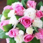桜はなぜピンク色?バラやカーネーションと同じアレが理由!
