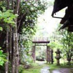 神護寺→高山寺のまわり方をザックリ解説※体力ない人向き
