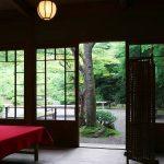 【名古屋市内】桜が見れるカフェ!気軽にお花見ティータイム♡
