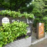 名古屋市のオーガニックショップ&自然食品店〜小規模編