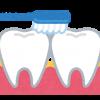 天然素材のエコな歯ブラシ!天然毛・自然素材で土に還る歯ブラシ